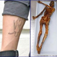 img 1186577317 831 200x200 Tatuaggi famosi