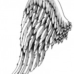 Angel wing by Placido
