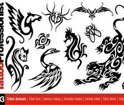 3nuovositoprofessionist 250x212 Disegni Tattoo   Polinesiani