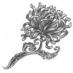 chrysanthemum flower tattoo