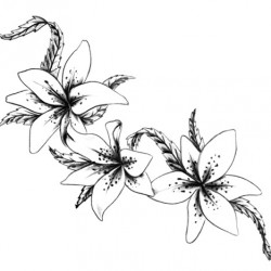 lily flowers tattoo 250x250 Drawings Tattoo   Flowers