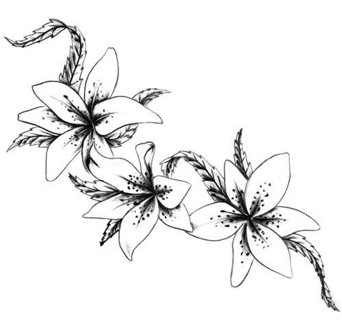 Drawings tattoo flowers ideatattoo for Disegni fiori per tatuaggi