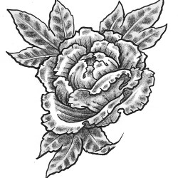 peony flower tattoo 250x250 Drawings Tattoo