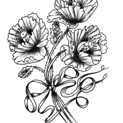 poppy flowers tattoo 250x250 Disegni Tattoo   Fiori