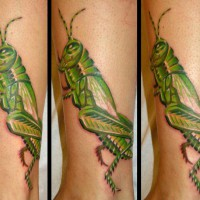 Grasshopper tattoo