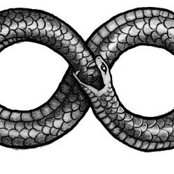 serpente e simbolo infinito