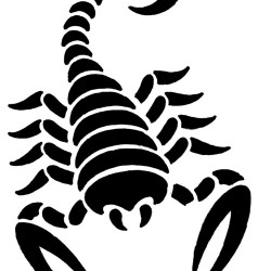 tribal scorpion tattoo