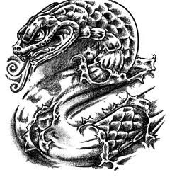 young snake tattoo 250x250 Disegni Tattoo   Serpenti