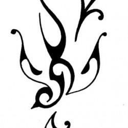 Rondine tribale disegno