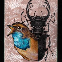 bird painting 200x200 Tattoo Artist Gallery: Jessica Mach