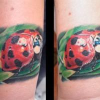 ladybird tattoo 200x200 Tattoo Artist Gallery: Michele Turco