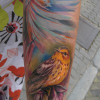 sparrow tattoo 200x200 Tattoo Artist Gallery: Ondrash