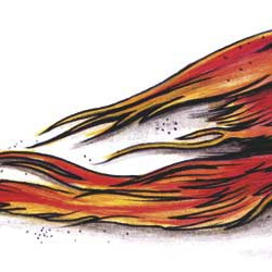 02 phoenix of fire tattoo 250x250 Disegni tattoo   La Fenice