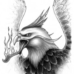 09 fire and phoenix tattoo 250x250 Disegni tattoo   La Fenice