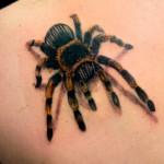 ragno tattoo 150x150 Tatuaggi di insetti: non solo farfalle!