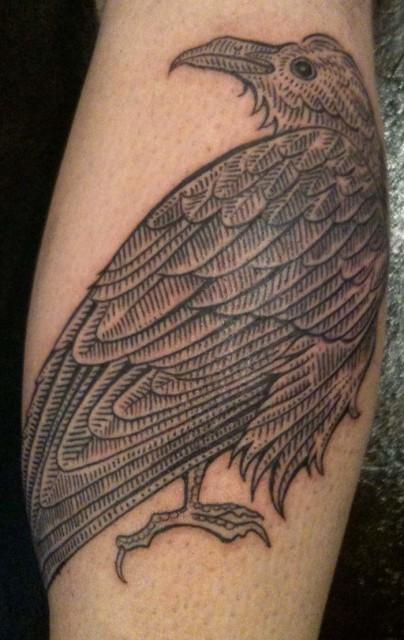 crow tattoo 404x640 crow tattoo