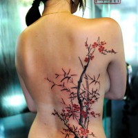 cherry blossoms tattoo, Joey Pang