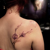 orchid tattoo, Wang