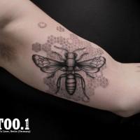 insect tattoo chaim 200x200 Tattoo Artist gallery: Chaim Machlev