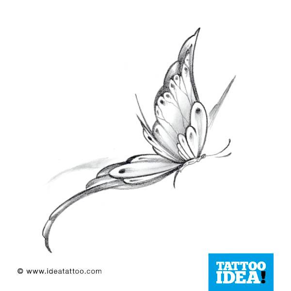 Farfalle Tattoo Gallery Disegni