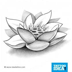 Tatto Idea fiori8 250x250 Disegni Tattoo   Fiori