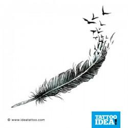 disegno di Piuma con uccelli in volo
