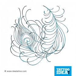 Tatuaggio di una Piuma di pavone traditional