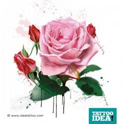 Rose realistiche stile acquerello